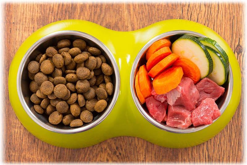 Раздельное питание для собаки